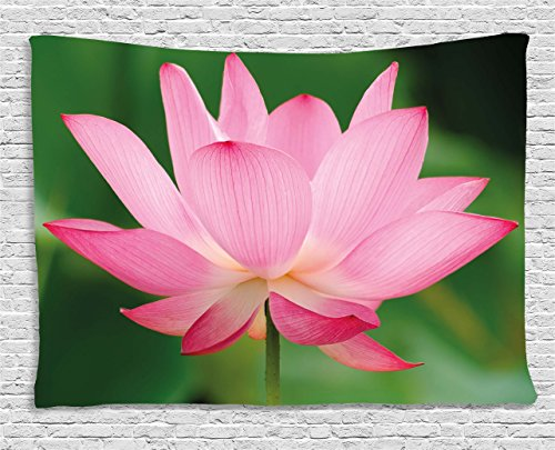 Pink Decor Tapestry by Ambesonne Flower Decorations Theme Beautiful Lotus Blossom Romantic Digital Print Wall Hanging for Bedroom Living Room Dorm 80 W X 60 L Inches Pink and Fern Green