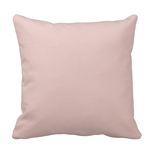 Decors Blush Peachy Light Pink Solid Color BackgroundCustom Pillowcase Soft Zippered Pillow Cushion Case Throw Pillow Covers 18X18 Inch