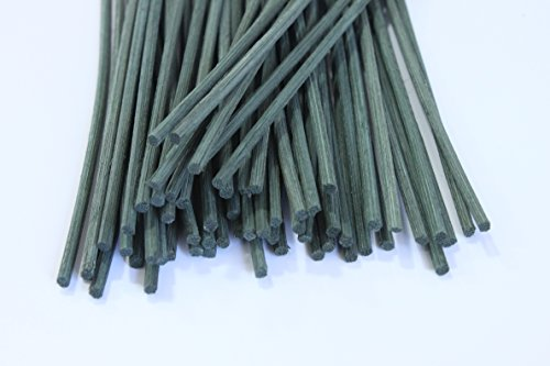 Feel Fragrance Reed Diffuser Sticks Replacement Rattan 12 X 012Inches Green60pcs)