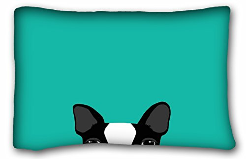 Tarolo Decorative Stylish Boston Terrier Funny Pattern Double size Printing Unique Throw Pillows Concealed Zipper Size 20x30 inches51x76cm One Sided