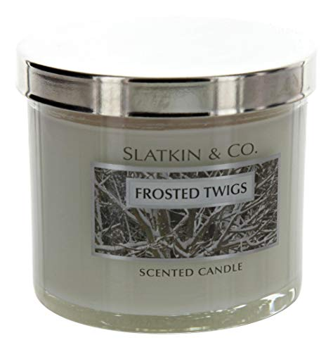 Bath and Body Works Slatkin Co Frosted Twigs Scented Candle 4 OZ